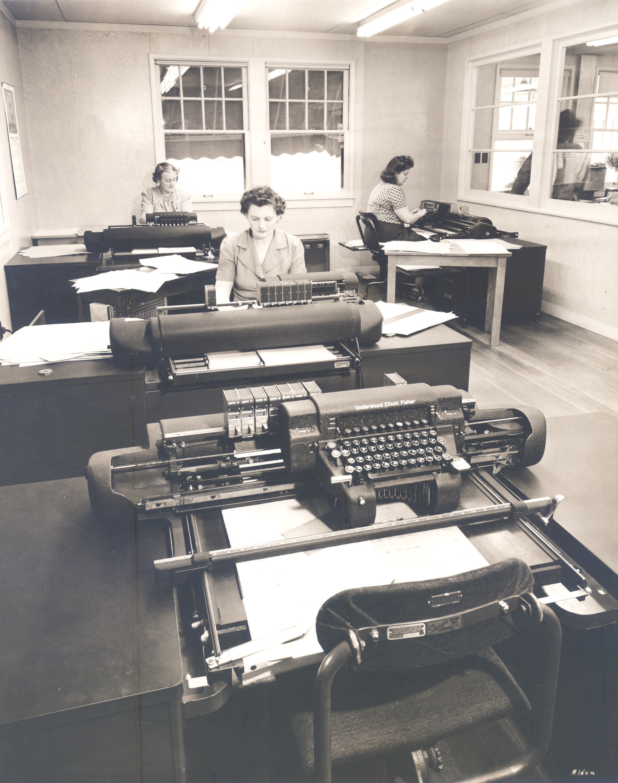 albina office