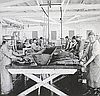 Chinese Cannery Workers near Astoria, Oregon // OrHi 28194